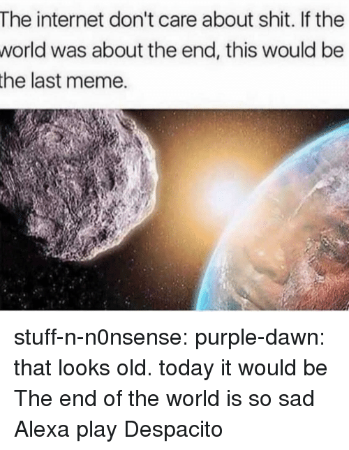 Internet, Meme, and Shit: The internet don't care about shit. If the  was about the end, this would be  world  the last meme. stuff-n-n0nsense: purple-dawn:   that looks old. today it would be   The end of the world is so sad Alexa play Despacito