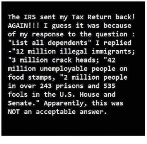"""I Guessed It: The IRS sent my Tax Return back!  AGAIN I guess it was because  of my response to the question  """"List all dependents"""" I replied  12 million illegal immigrants;  """"3 million crack heads  42  million unemployable people on  food stamps,  """"2 million people  in over 243 prisons and 535  fools in the U.S. House and  Senate  Apparently, this was  NOT an acceptable answer."""