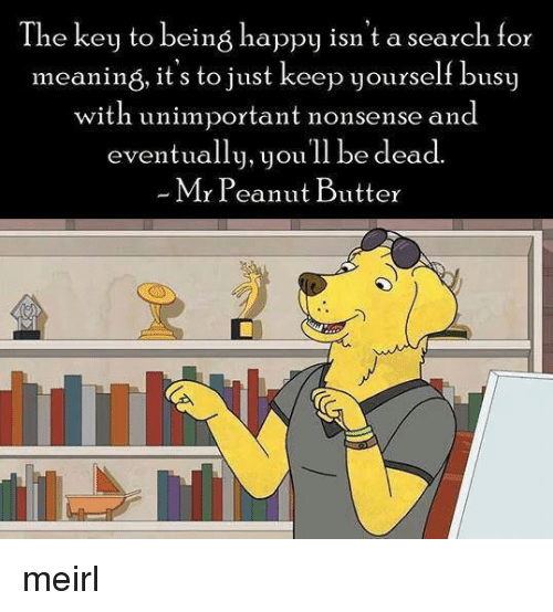 the key: The key to being happy isn't a search for  meaning, it's to just keep yourself busy  with unimportant nonsense and  eventually, youll be dead.  Mr Peanut Butter meirl
