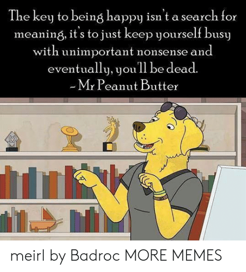 the key: The key to being happy isn't a search for  meaning, it's to just keep yourself busy  with unimportant nonsense and  eventually, youll be dead.  Mr Peanut Butter meirl by Badroc MORE MEMES