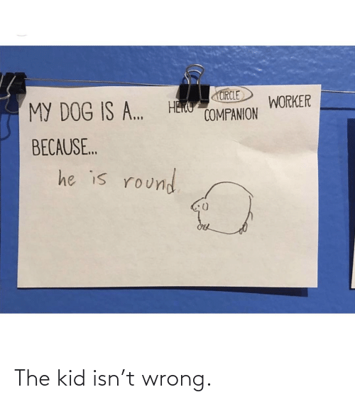 the kid: The kid isn't wrong.