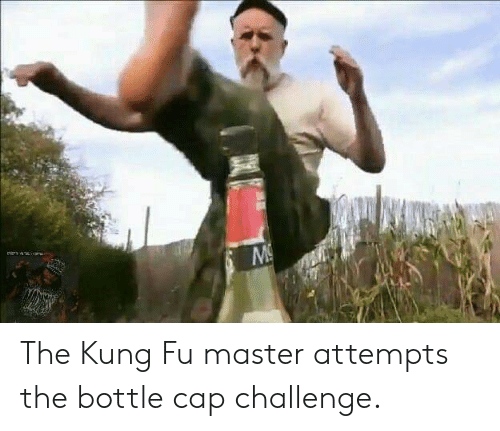 kung fu master: The Kung Fu master attempts the bottle cap challenge.