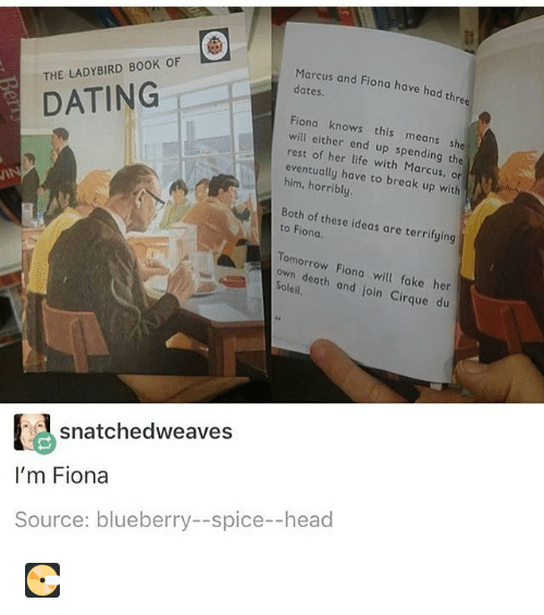 dating ladybird books