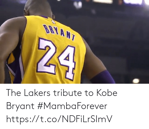 Los Angeles Lakers: The Lakers tribute to Kobe Bryant #MambaForever   https://t.co/NDFiLrSImV