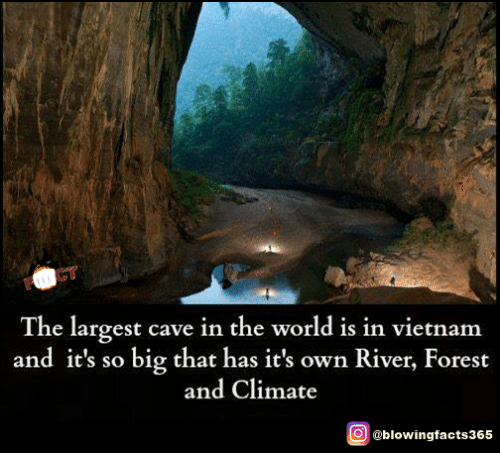 Memes, Vietnam, and World: The largest cave in the world is in vietnam  and it's so big that has it's own River, Forest  and Climate  O @blowingfacts365