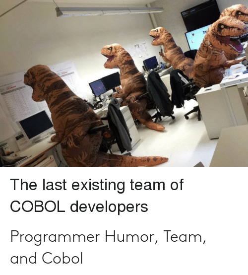 Programmer Humor: The last existing team of  COBOL developers Programmer Humor, Team, and Cobol
