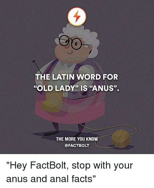"""Memes, The More You Know, and Anal: THE LATIN WORD FOR  """"OLD LADY"""" IS """"ANUS"""".  THE MORE YOU KNOW  @FACT BOLT """"Hey FactBolt, stop with your anus and anal facts"""""""