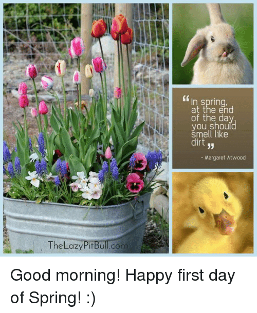 "Memes, 🤖, and Dirt: The Lazy PitBull co  ""In spring,  at the end  of the da  you should  Smell like  dirt  33  Margaret Atwood Good morning! Happy first day of Spring! :)"