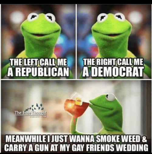 Smoke Weed: THE LEFT CALL ME  A REPUBLICANADEMOCRAT  THE RIGHT CALL ME  The Free Thought  AEETCO  MEANWHILEIJUST WANNA SMOKE WEED&  CARRY A GUN AT MY GAY FRIENDS WEDDING
