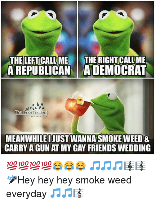 Memes, Smoke Weed Everyday, and Wedding: THE LEFTCALLME  THE RIGHTCALLME  A REPUBLICAN ADEMOCRAT  The  Free Thought  MEANWHILEIJUST WANNASMOKE WEED &  CARRY AGUN AT MY GAY FRIENDS WEDDING 💯💯💯💯😂😂😂 🎵🎵🎵🎼🎼🎤Hey hey hey smoke weed everyday 🎵🎵🎼