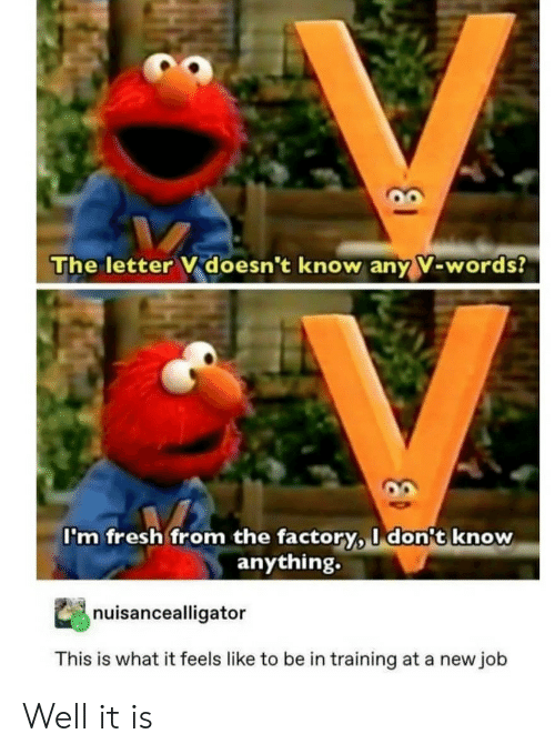 What It Feels Like: The letter V doesn't know any V-words?  I'm fresh from the factory, I don't know  anything.  nuisancealligator  This is what it feels like to be in training at a new job Well it is