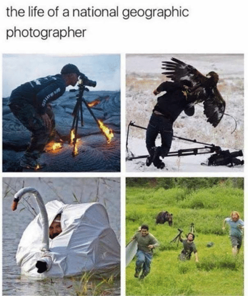 Life Of A: the life of a national geographic  photographer