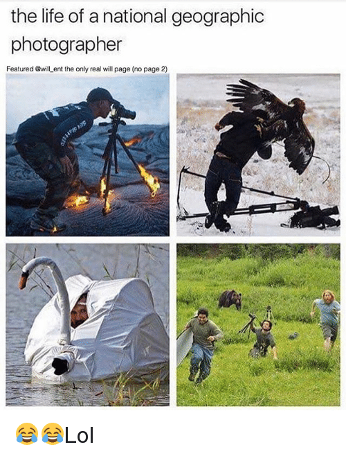 Life, Memes, and National Geographic: the life of a national geographic  photographer  Featured @will ent the only real will page (no page 2) 😂😂Lol