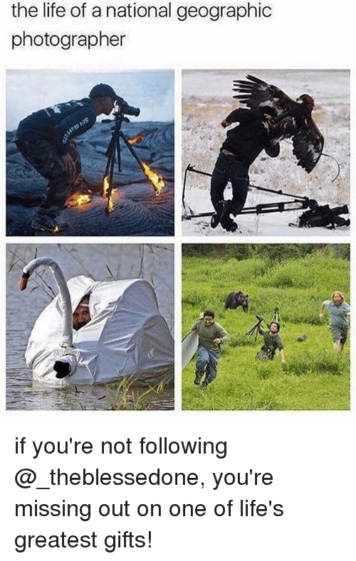 Life, Memes, and National Geographic: the life of a national geographic  photographer if you're not following @_theblessedone, you're missing out on one of life's greatest gifts!