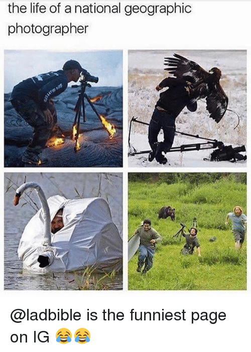 Life, Memes, and National Geographic: the life of a national geographic  photographer @ladbible is the funniest page on IG 😂😂