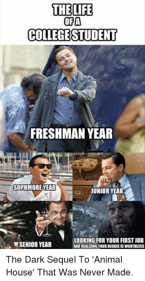 Senior Year: THE LIFE  OFA  COLLEGESTUDENT  FRESHMAN YEAR  SOPHMORE YEAR  JUNIOR YEAR  SENIOR YEAR  LOOKING FOR YOUR FIRST JOEB  AND REALIZING YOUR DEGREE IS WORTHLESS The Dark Sequel To 'Animal House' That Was Never Made.