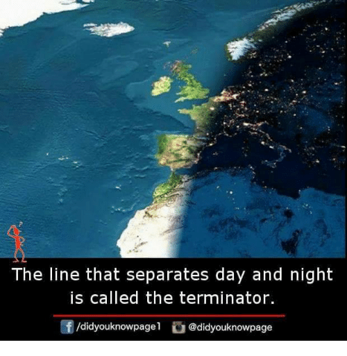 Memes, Terminator, and The Terminator: The line that separates day and night  is called the terminator.  f/didyouknowpagel@didyouknowpage