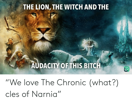 "narnia: THE LION, THE WITCH AND THE  AUDACITY OF THIS BITCH ""We love The Chronic (what?) cles of Narnia"""