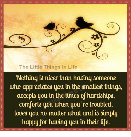 The Little Things Matter Most In Life: The Little Things In Life Nothing Is Nicer Than Hawing