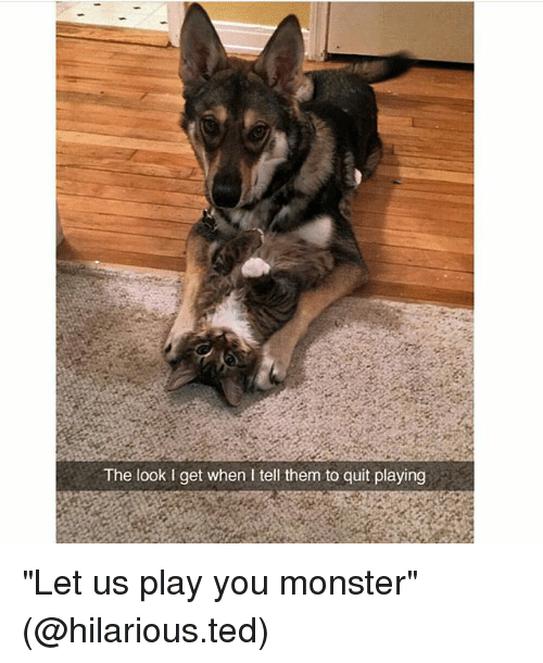 """Quit Playing: The look l get when I tell them to quit playing """"Let us play you monster"""" (@hilarious.ted)"""
