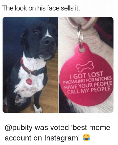 Funny, Instagram, and Meme: The look on his face sells it.  I GOT LOST  PROWLING FOR BITCHES  HAVE YOUR PEOPLE  CALL MY PEOPLE @pubity was voted 'best meme account on Instagram' 😂