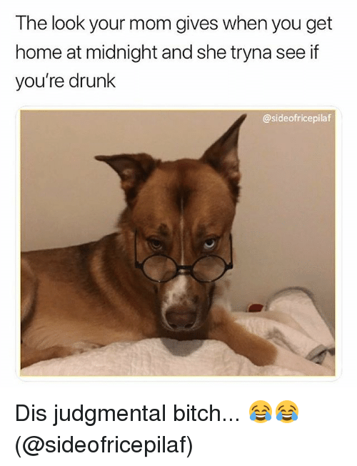 Bitch, Drunk, and Memes: The look your mom gives when you get  home at midnight and she tryna see if  you're drunk  @sideofricepilaf Dis judgmental bitch... 😂😂(@sideofricepilaf)