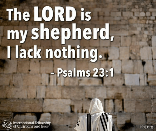 Memes, International, and 🤖: The LORD is  my shepherd,  I lack nothing.  Psalms 23:1  International Fellowship  of Christians and Jews  ifcj.org