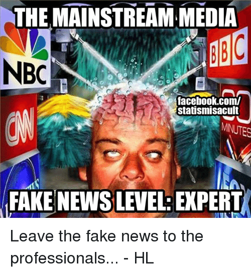 Memes, 🤖, and Nbc: THE MAINSTREAM MEDIA  NBC  facebook.com/  statismisacult  FAKE NEWS LEVEL EXPERT Leave the fake news to the professionals... - HL