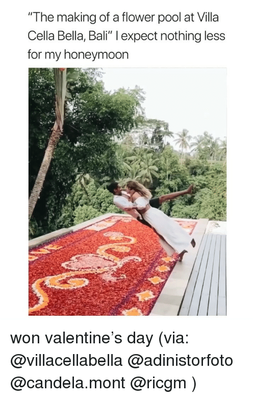 "villa: ""The making of a flower pool at Villa  Cella Bella, Bali"" l expect nothing less  for my honeymoon won valentine's day (via: @villacellabella @adinistorfoto @candela.mont @ricgm )"