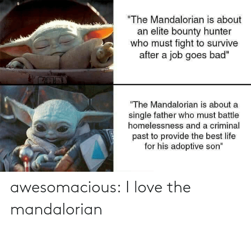 "criminal: ""The Mandalorian is about  an elite bounty hunter  who must fight to survive  after a job goes bad""  ""The Mandalorian is about a  single father who must battle  homelessnesss and a criminal  past to provide the best life  for his adoptive son"" awesomacious:  I love the mandalorian"