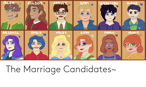 Marriage: The Marriage Candidates~