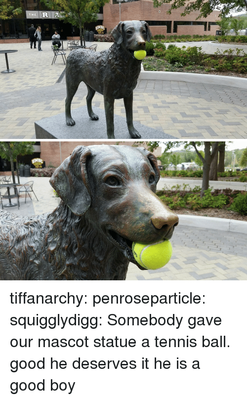 tennis ball: THE  MB tiffanarchy: penroseparticle:  squigglydigg:  Somebody gave our mascot statue a tennis ball.  good he deserves it  he is a good boy