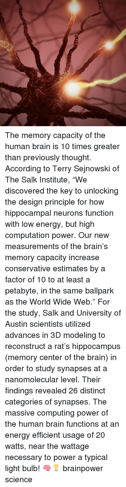 """Energy, Memes, and Brain: The memory capacity of the human brain is 10 times greater than previously thought. According to Terry Sejnowski of The Salk Institute, """"We discovered the key to unlocking the design principle for how hippocampal neurons function with low energy, but high computation power. Our new measurements of the brain's memory capacity increase conservative estimates by a factor of 10 to at least a petabyte, in the same ballpark as the World Wide Web."""" For the study, Salk and University of Austin scientists utilized advances in 3D modeling to reconstruct a rat's hippocampus (memory center of the brain) in order to study synapses at a nanomolecular level. Their findings revealed 26 distinct categories of synapses. The massive computing power of the human brain functions at an energy efficient usage of 20 watts, near the wattage necessary to power a typical light bulb! 🧠💡 brainpower science"""