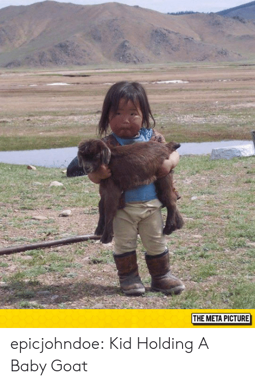 Baby Goat: THE META PICTURE epicjohndoe:  Kid Holding A Baby Goat