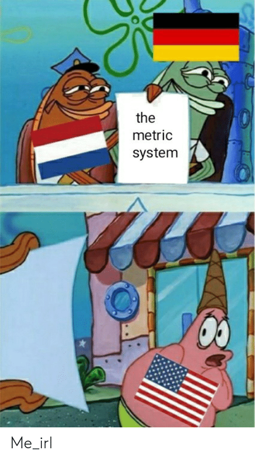metric system: the  metric  system Me_irl