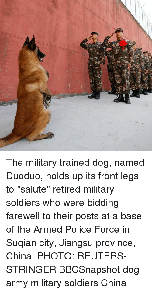 "Memes, Police, and Soldiers: The military trained dog, named Duoduo, holds up its front legs to ""salute"" retired military soldiers who were bidding farewell to their posts at a base of the Armed Police Force in Suqian city, Jiangsu province, China. PHOTO: REUTERS-STRINGER BBCSnapshot dog army military soldiers China"