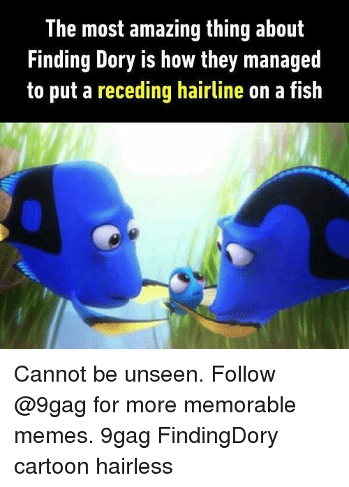 9gag, Hairline, and Memes: The most amazing thing about  Finding Dory is how they managed  to put a receding hairline on a fish Cannot be unseen. Follow @9gag for more memorable memes. 9gag FindingDory cartoon hairless