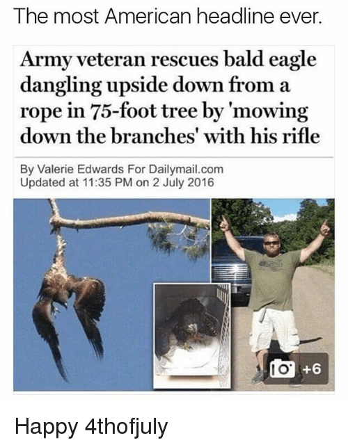 Memes, Army, and American: The most American headline ever.  Army veteran rescues bald eagle  dangling upside down from a  rope in 75-foot tree by 'mowing  rope in 75-foot tree by mowin  down the branches' with his rifle  By Valerie Edwards For Dailymail.com  Updated at 11:35 PM on 2 July 2016  +6 Happy 4thofjuly