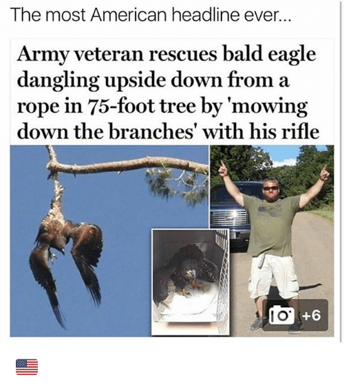 Memes, Army, and American: The most American headline ever...  Army veteran rescues bald eagle  dangling upside down from a  rope in 75-foot tree by 'mowin;g  down the branches' with his rifle  I O  +6 🇺🇸