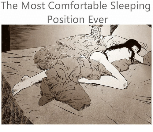 funny comfortable memes of 2016 on sizzle relationships With comfy sleeping positions
