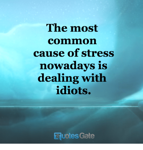 Dealing With Idiots: The most  Comm on  cause of stress  nowadays is  dealing with  idiots.  esGate