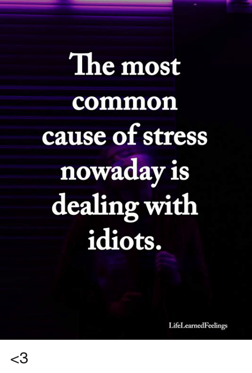 Dealing With Idiots: The most  common  cause of stress  nowaday is  dealing with  idiots.  LifeLearnedFeelings <3