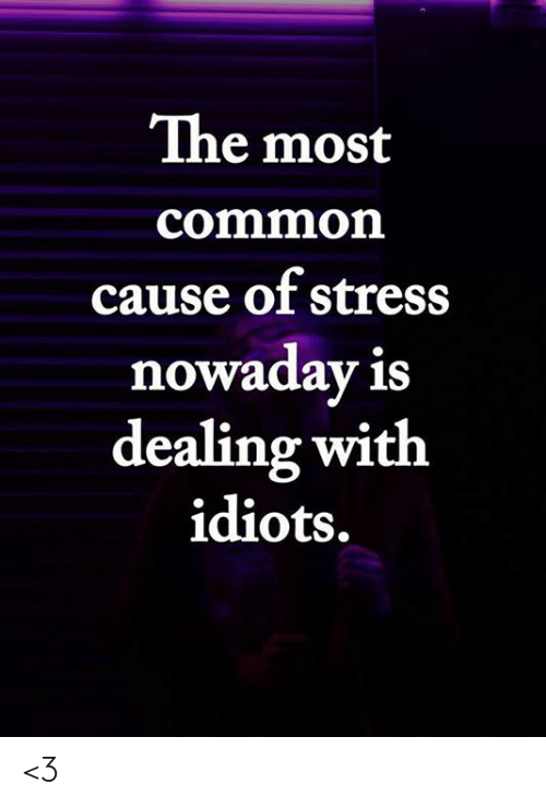 Dealing With Idiots: The most  common  cause of stress  nowaday is  dealing with  idiots. <3