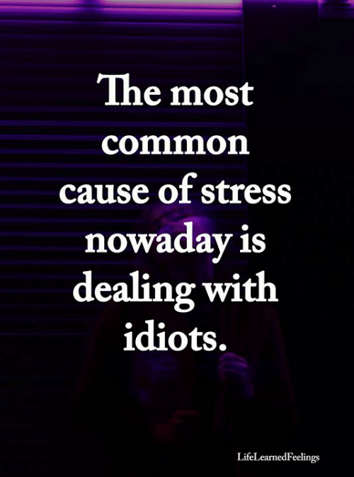Dealing With Idiots: The most  common  cause of stress  nowaday is  dealing with  idiots.  LifeLearnedFeelings