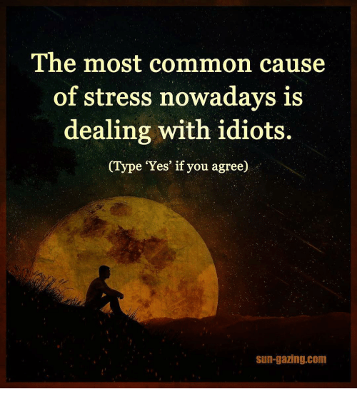Dealing With Idiots: The most common cause  of stress nowadays is  dealing with idiots.  (Type 'Yes' if you agree)  Sun-gazing com