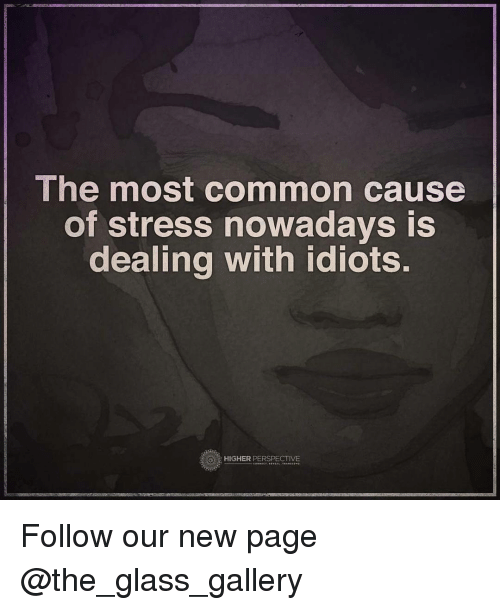 Dealing With Idiots: The most common cause  of stress nowadays is  dealing with idiots.  HIGHER PERSPECTIVE Follow our new page @the_glass_gallery