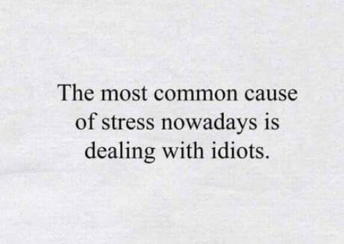 Dealing With Idiots: The most common cause  of stress nowadays is  dealing with idiots.