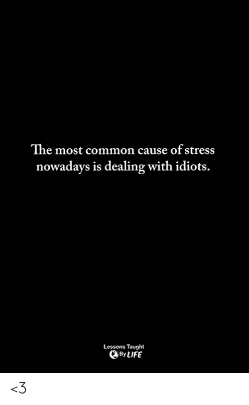 Dealing With Idiots: The most common cause of stress  nowadays is dealing with idiots.  Lessons Taught  ByLIFE <3