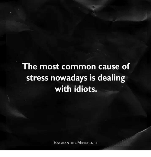 Dealing With Idiots: The most common cause of  stress nowadays is dealing  with idiots.  ENCHANTING MINDs.NET