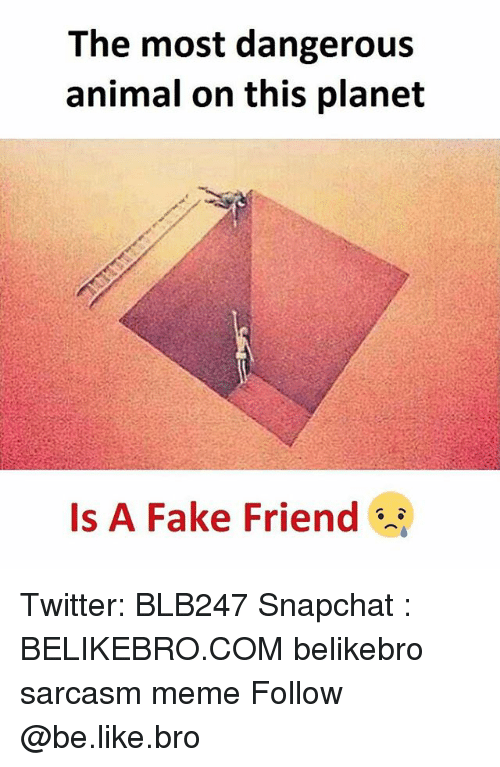 Be Like, Fake, and Meme: The most dangerous  animal on this planet  Is A Fake Friend Twitter: BLB247 Snapchat : BELIKEBRO.COM belikebro sarcasm meme Follow @be.like.bro